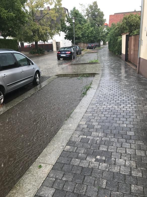Überflutung (9)